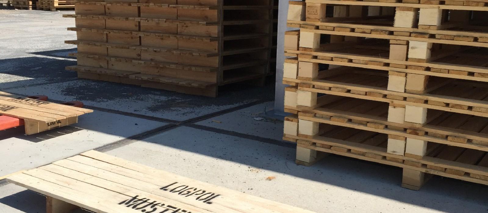 Holzpalette-1450×450-in-Displayausführung