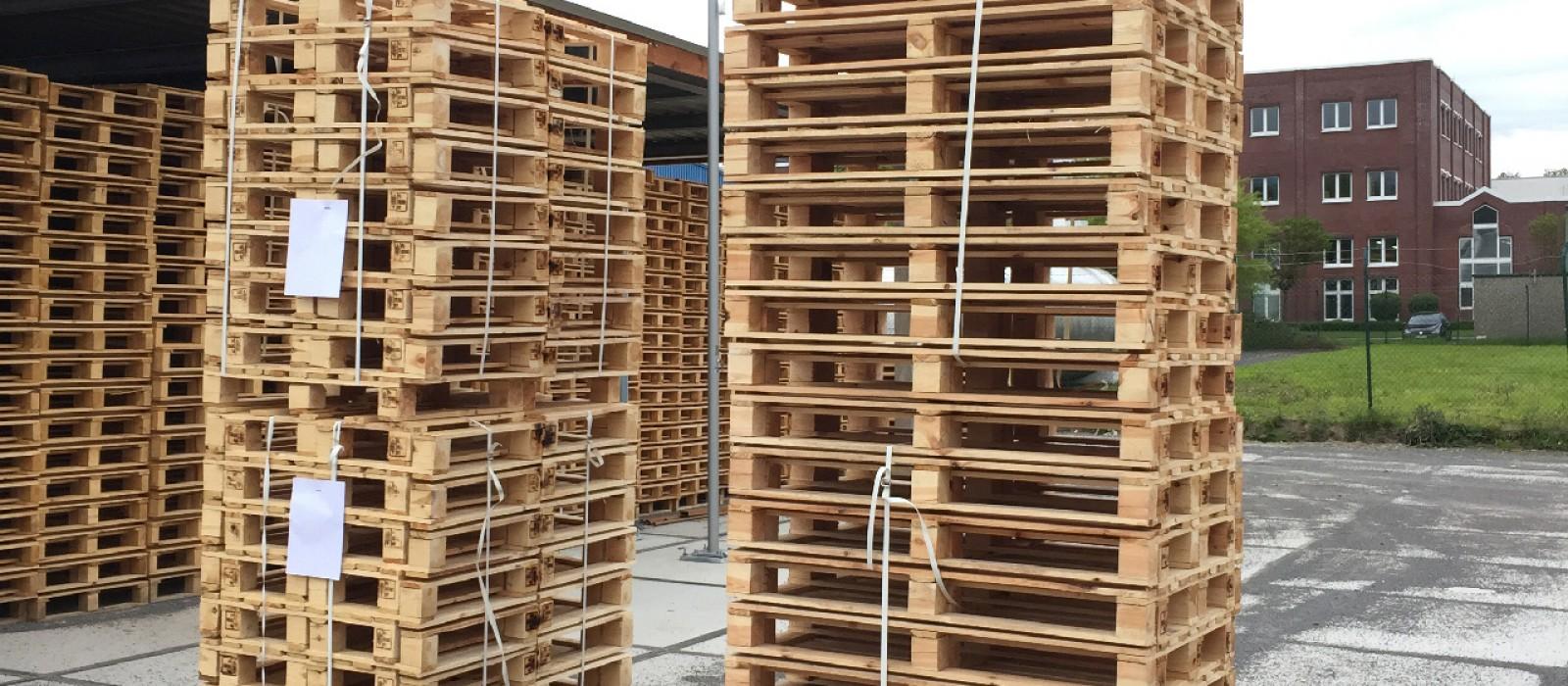 Holzpalette-800×600-in-Versandeinheit